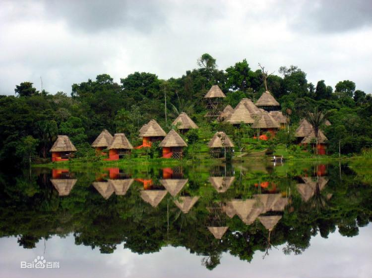 亚马逊雨林的常绿森林占全球陆地主要碳元素产量的10