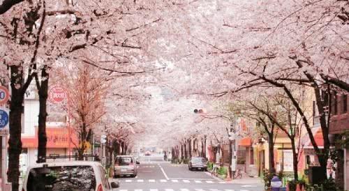 又一日本女孩被释放!女生再一次被判无罪装修卧室强奸双人犯人效果图图片