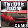 小小的赛车 Little Racing Demo