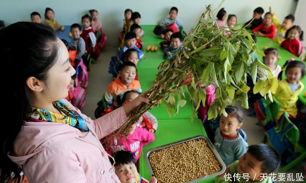 4岁男童被幼儿园劝退,宝妈去学校理论,园长:老师不是你家保姆