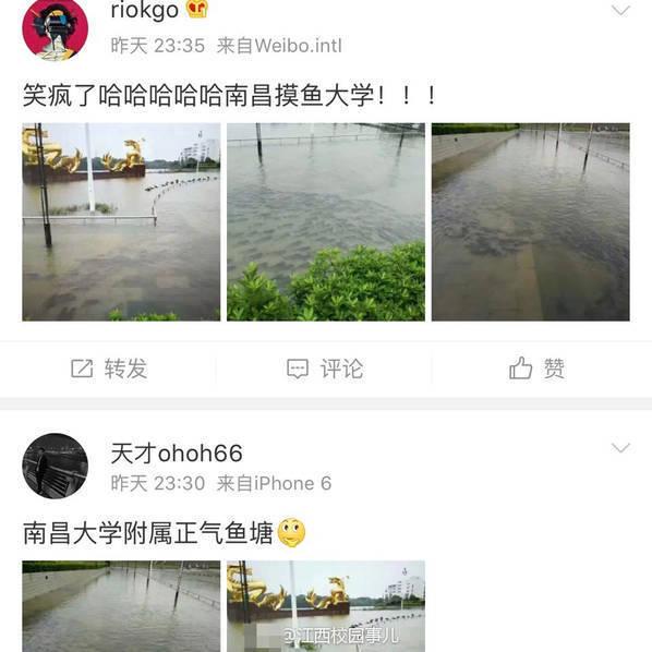 引          照            闻        (引) - sun50919 - 牛郎官庄 步履博客的故乡