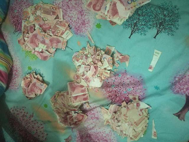 青岛5岁孩子玩耍 把5万现金撕成碎片 -  - 真光 的博客