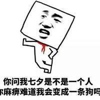 七夕情人节搞笑段子表情七夕不约别跟我提纠结1手机表情包图片小qq