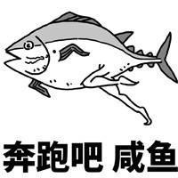 咸鱼表情包3.jpg
