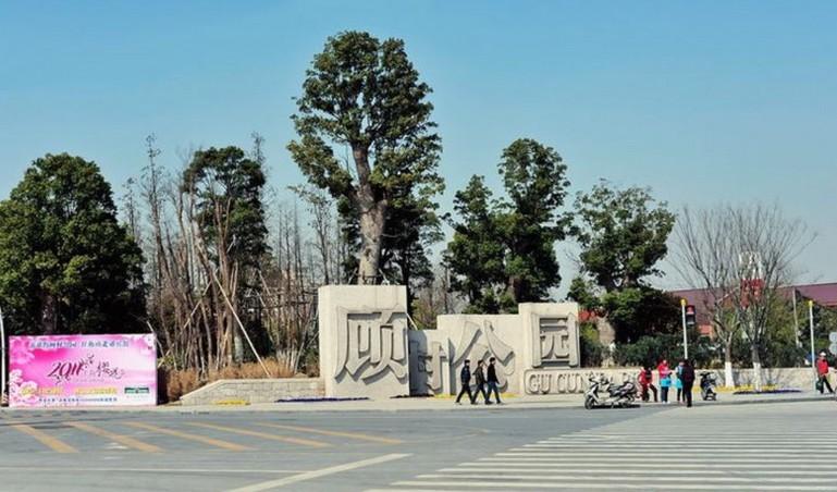 上海顾村公园顾村公园位于宝山区顾村镇境内