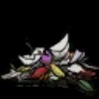 花瓣(材料).png