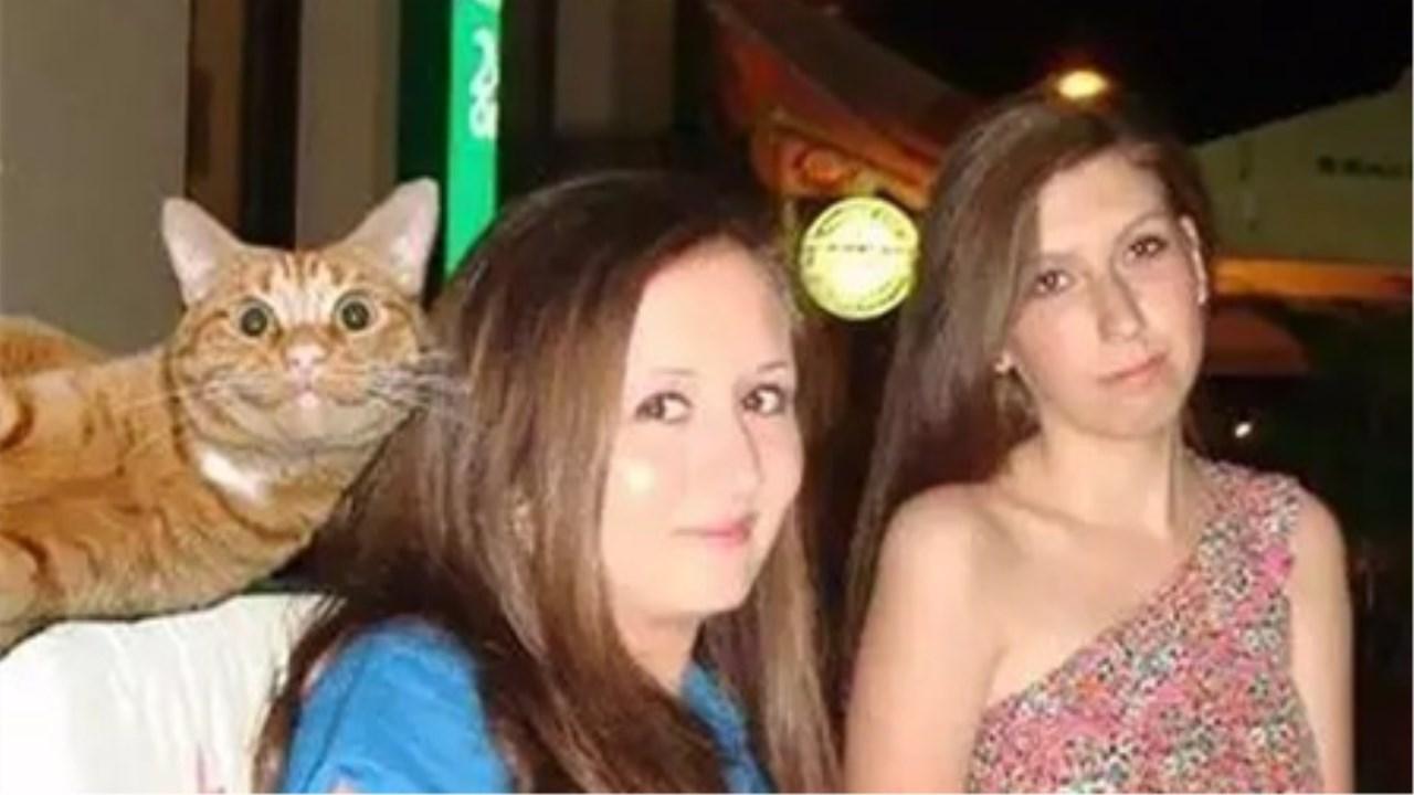 摧绵大湿:最虔诚的动物!动物界笑的最真诚的猫