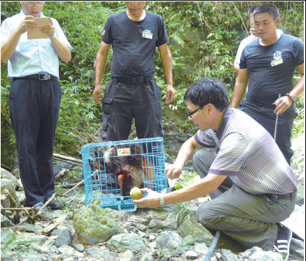 据介绍,8月17日,重庆小动物保护协会接到渝北区龙山派出所电话称,一