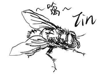 苍蝇怎么画