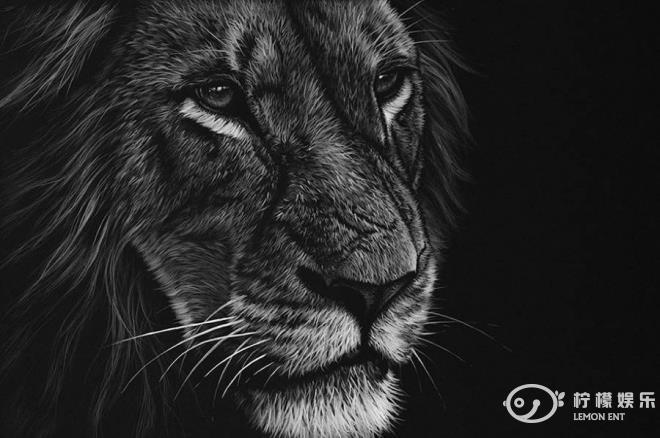 动物黑白照(3)