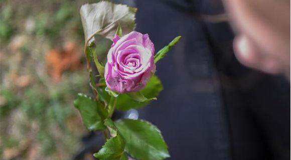 新西兰克赖斯特彻奇学生悼念恐袭案死难者