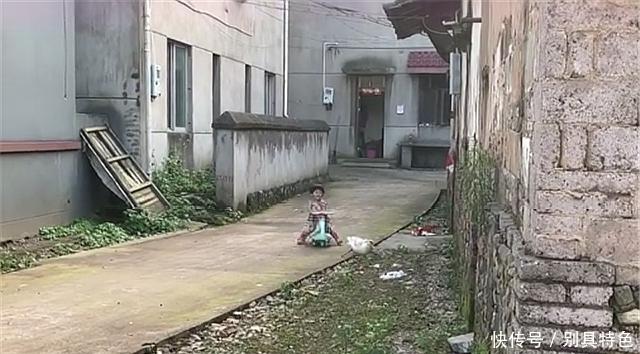 三岁宝宝回到村里后,村里的鸭子遭殃了,网友:孩子好淘气